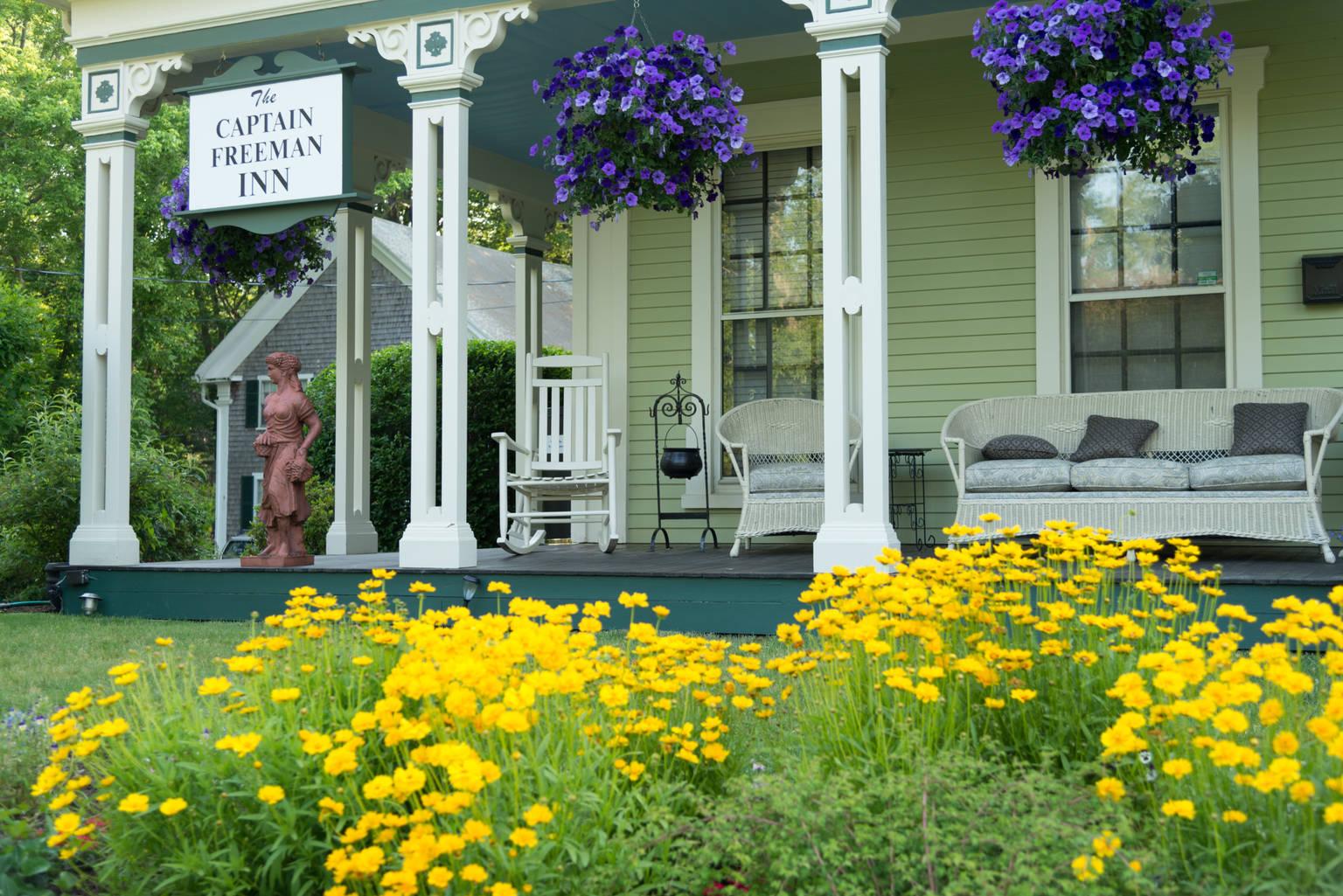 A yellow flower at Captain Freeman Inn.