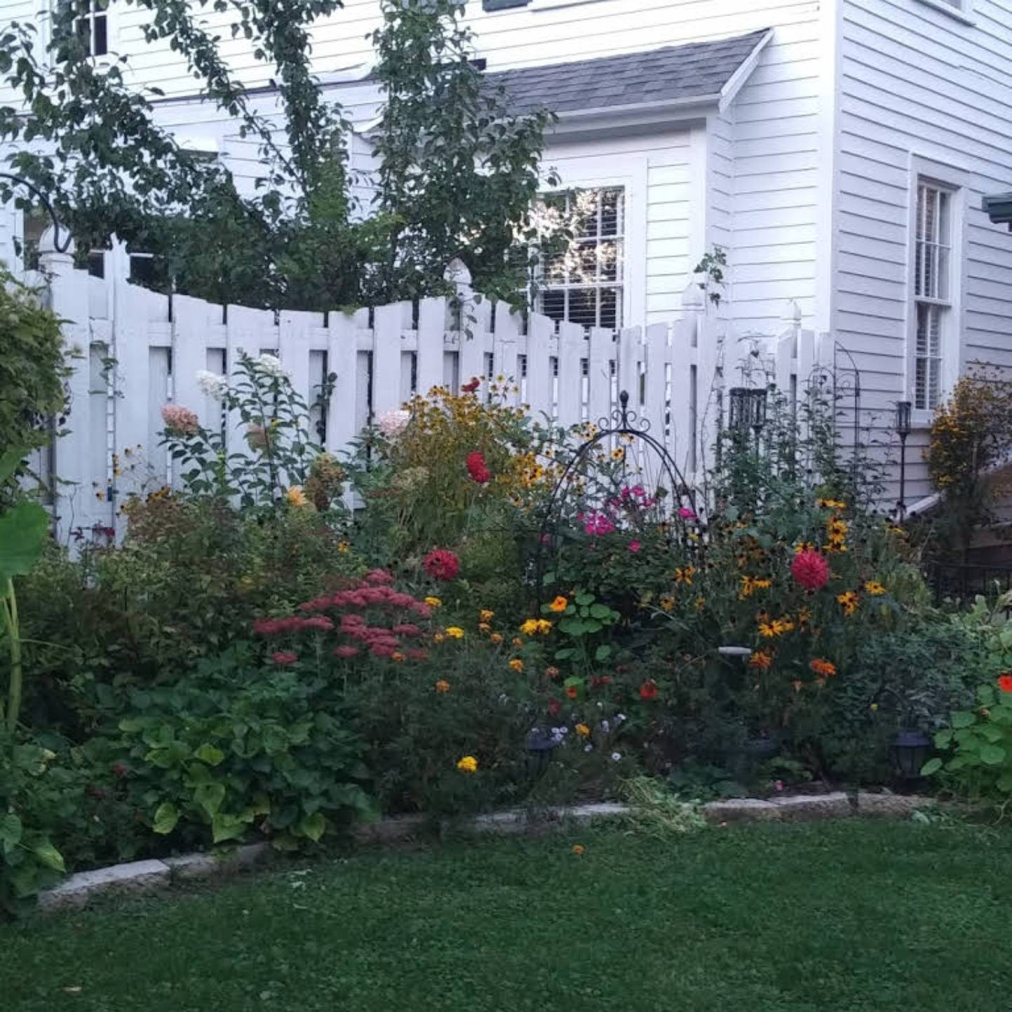 A close up of a flower garden at The Lilly Pad, Boerners' Guest House.