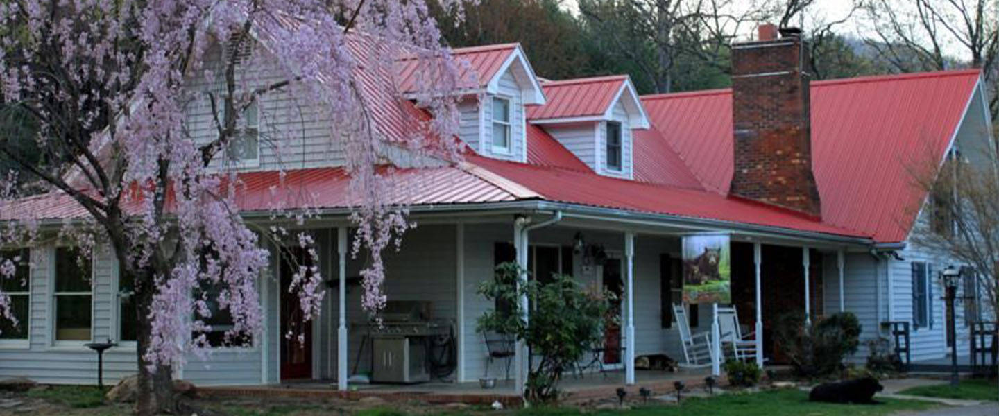 A house with trees in front of a building at Blue Ridge Manor Bed and Breakfast.
