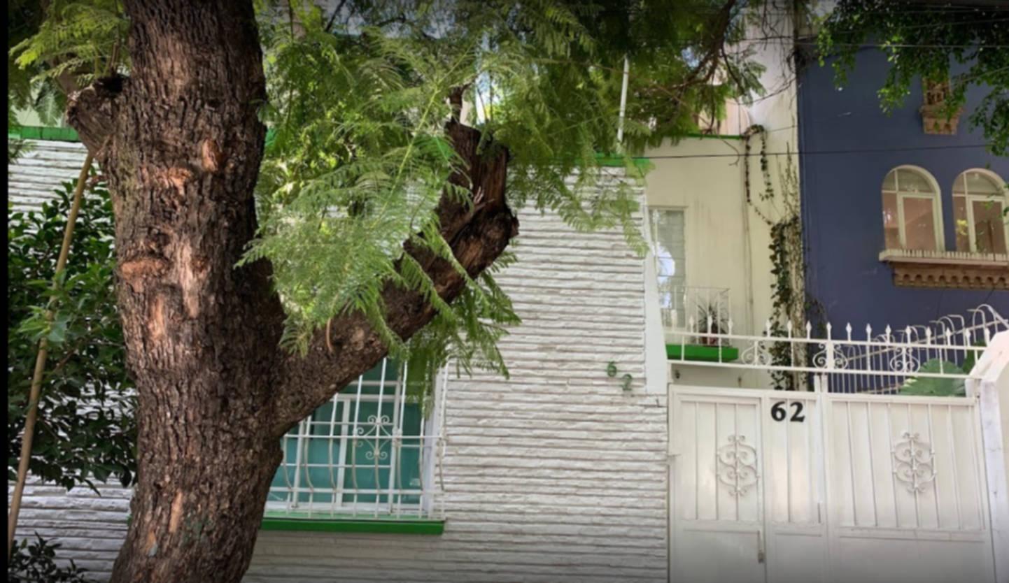 A tree in front of a building at Distrito Condesa.