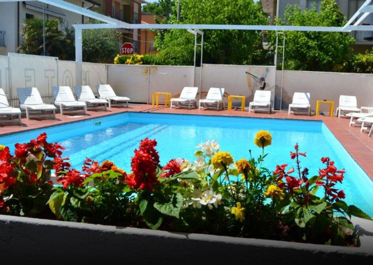 A group of colorful flowers at Hotel Apis.